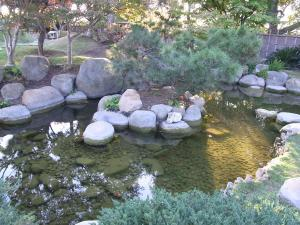 サンアントニオ植物園内:熊本園 1012
