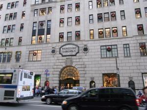 ニューヨーク:一日マイバス観光 1018