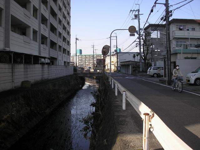 P3290053.jpg