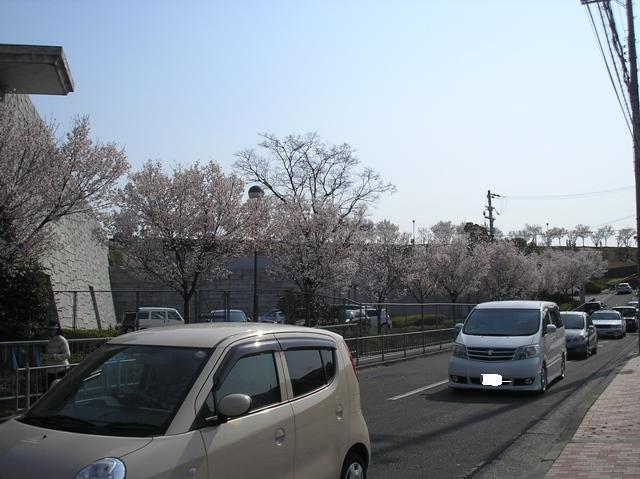 P4080048.jpg