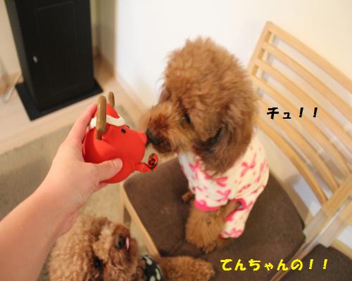 てんちゃんの!!