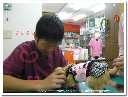 2009-07-13-06.jpg