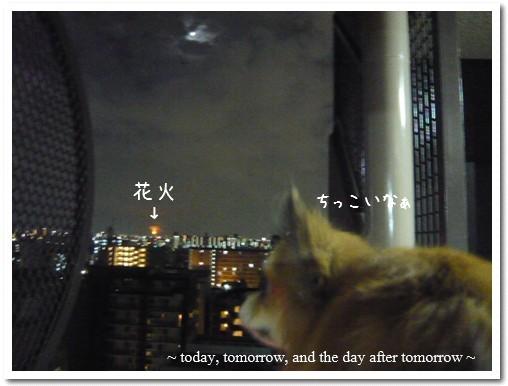 2009-08-02-01.jpg