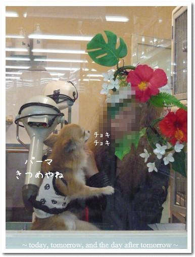 2009-08-04-03.jpg