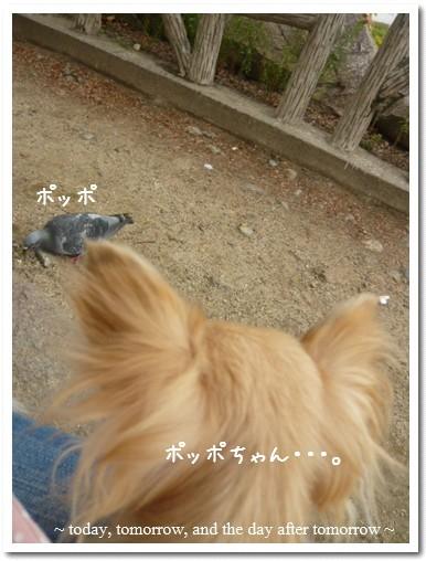 2009-09-23-008.jpg