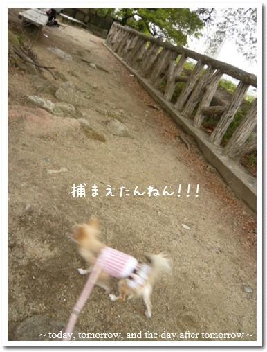 2009-09-23-09.jpg