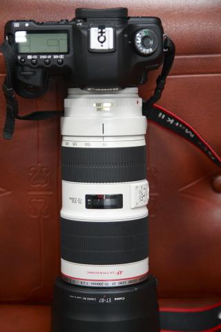 EF7020028LIS2.jpg