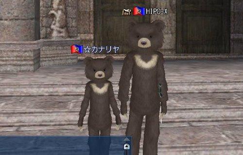 クマお披露目2