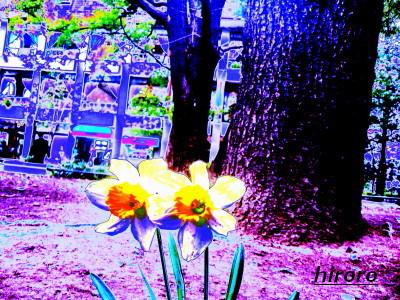 090123日比谷(0803)