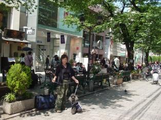 Jiyugaoka-street.jpg