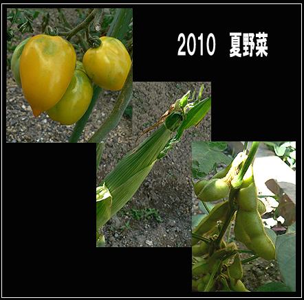 201008071