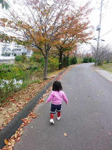 秋の風景 後姿