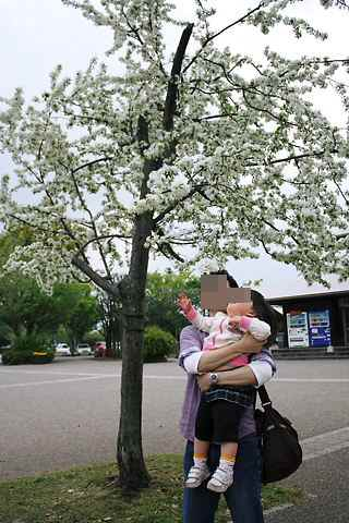 ズミの木の前でパパとcoco