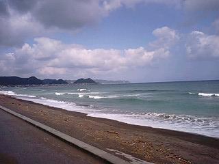 シーワールド海