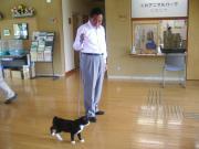 090614 パンダと所長のお散歩♪