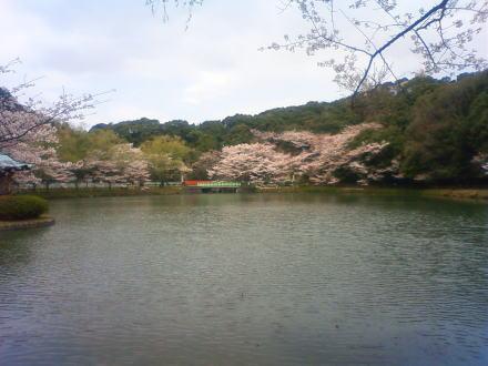 100403jyokoujipark.jpg