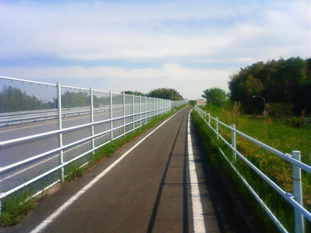 100509cycling4.jpg