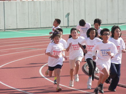 101204SB marathon3