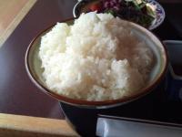 品プリランチごはんおおもり2010-6-15
