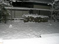 雪090124-1