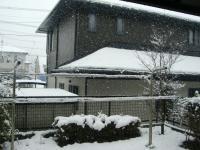 雪090125