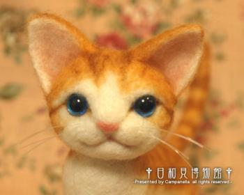 cat10b.jpg