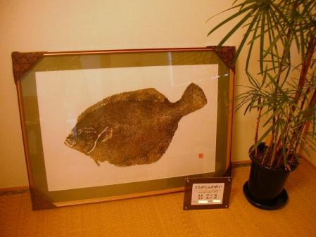 gyotaku 001 - コピー