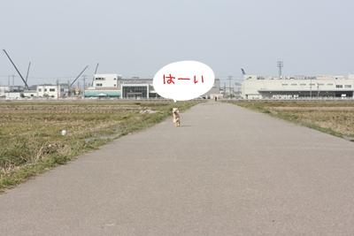 20100321-06.jpg