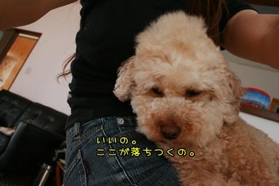 20100716-05.jpg