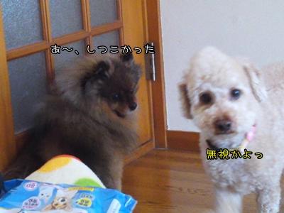 20110325-05.jpg