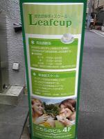 leafcup.jpg