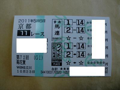 菊 002