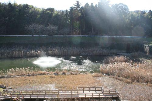風景-20091220-1