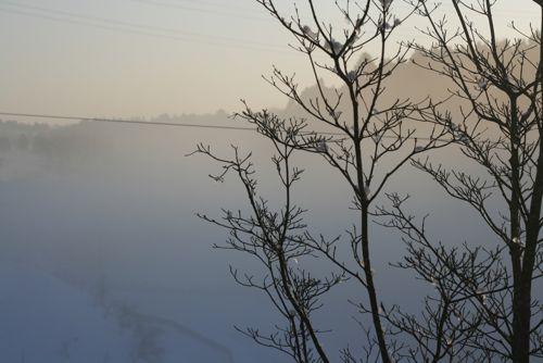 風景_20100202-1