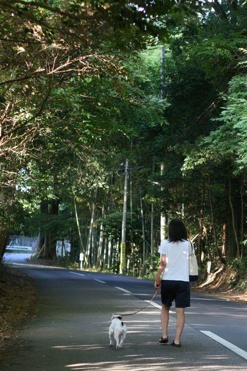 osanpo-20100913-1(前の)