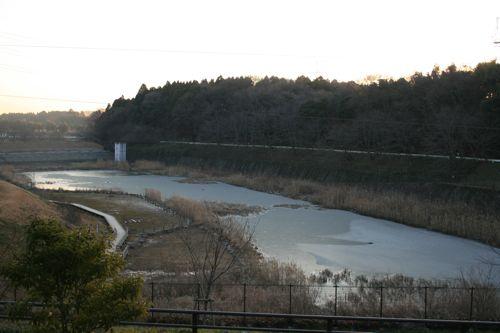 風景-20110111-1