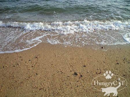 瀬戸内の海0325umi1.jpg