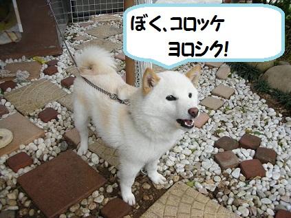 浜松滞在 001