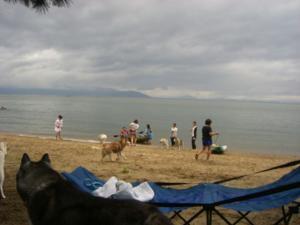 2010 7月琵琶湖カヌー 065