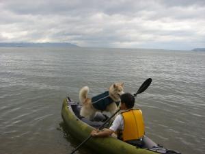2010 7月琵琶湖カヌー 108