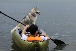 2010 7月琵琶湖カヌー 210