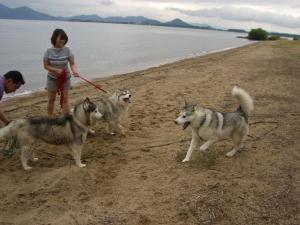 2010 7月琵琶湖カヌー 059