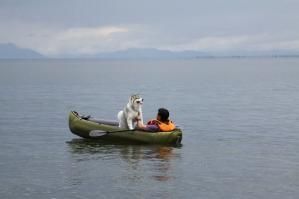 2010 7月琵琶湖カヌー 178