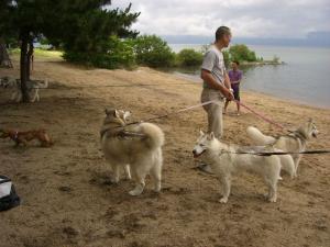 2010 7月琵琶湖カヌー 080