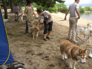 2010 7月琵琶湖カヌー 083a
