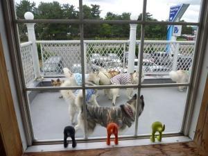 2010 7月琵琶湖カヌー 394
