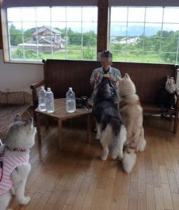 2010 7月琵琶湖カヌー 373