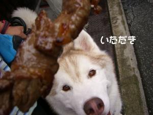 2010 8月高山・乗鞍 009a