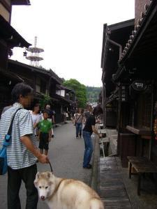 2010 8月高山・乗鞍 026