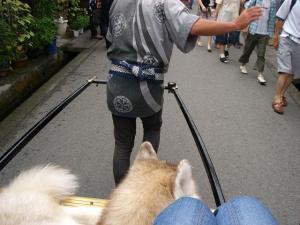 2010 8月高山・乗鞍 030